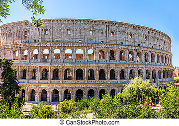 Coliseum in greenery, summer view, no people, Rome, Italy -...