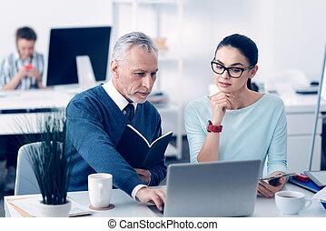collègues, bureau, fonctionnement, ordinateur portable, ...