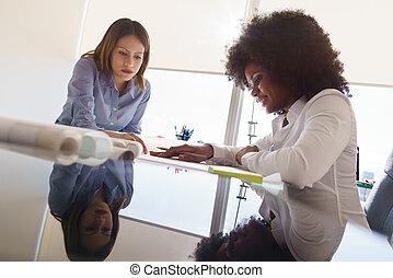 collègues, plans, projet logement, conversation, architecte, femmes