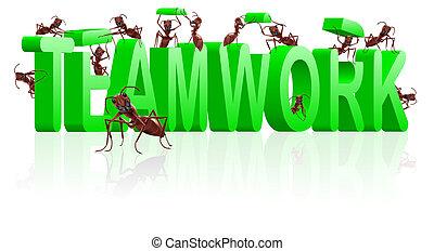 collaboration, collaboration, ou, coopération