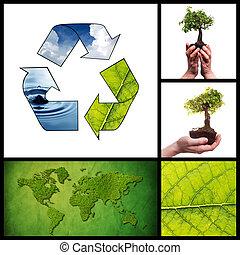 collage, środowiskowy