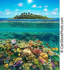 tropical beach with beautiful underwater world