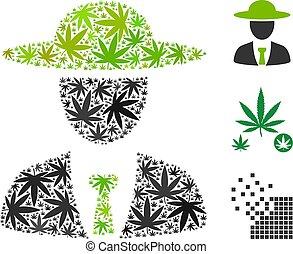 collage, agronomist, jefe, cannabis