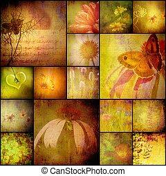 collage, album, natuur, bloemen, en, vlinder, ouderwetse ,...