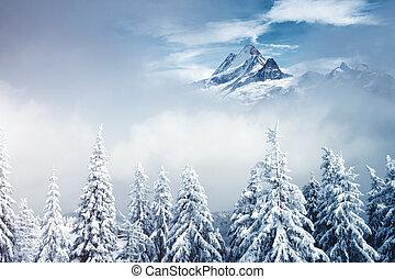 collage., alpes, emplacement, europe., créatif, suisse, suisse