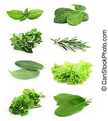 collage, av, grön, och, juice, krydda