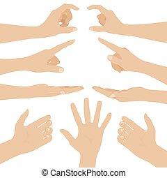 collage, bianco, donna, fondo, mani