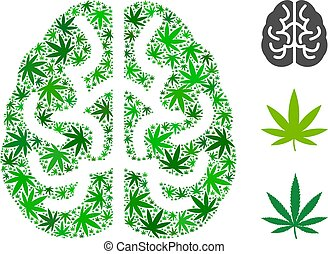 collage, cerebro, cáñamo, hojas