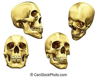 collage, cráneos, aislado, oro