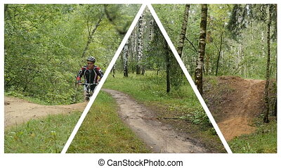 Collage. Cyclist rides through the forest