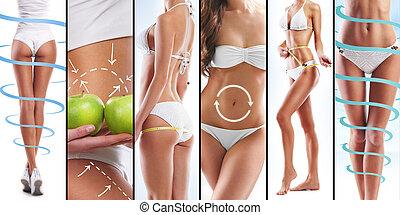 collage, de, ataque, hembra, cuerpos