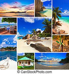 collage, de, verano, playa, imágenes