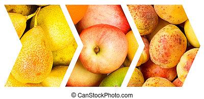 collage, di, molti, frutta verdure
