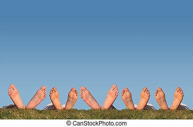 collage, dużo, nogi, trawa