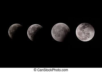 collage, fasi, luna