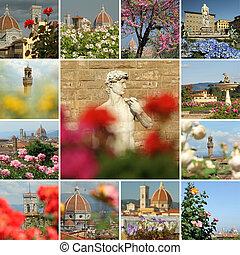 collage, florecimiento, florencia