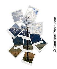 collage, foto, paesaggio, disegno, tuo