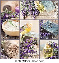 collage, frais, lavande