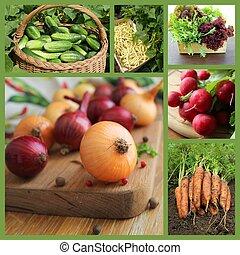 collage, fresco, vegetabl, natural