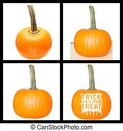 Collage fresh orange pumpkin