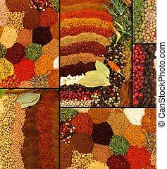 collage, herbes, épices