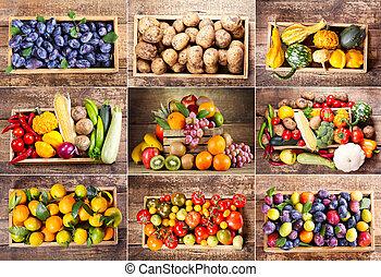 collage, i, adskillige, frugter grønsager