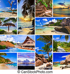 collage, imágenes, playa, verano