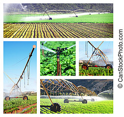 collage, images, irrigation