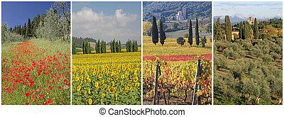 collage, immagini, fantastico, paesaggio, toscano