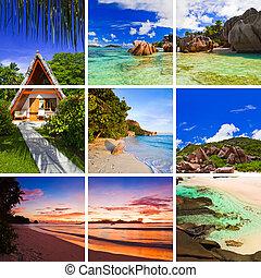 collage, immagini, spiaggia, estate