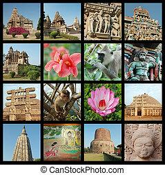 collage, india, viaje, -, fotos, indio, plano de fondo, ir, señales