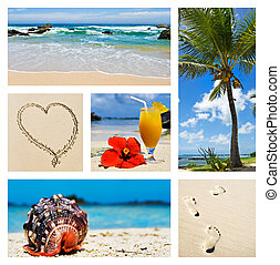 collage, isla, escenas, tropical