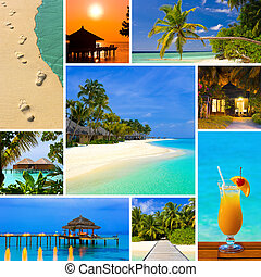 collage, lato, wizerunki, malediwy, plaża
