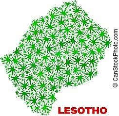 collage, lesotho, foglie, marijuana, mappa