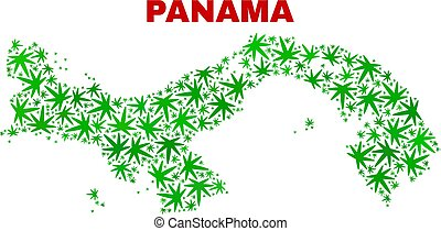 collage, mappa, foglie, marijuana, panama