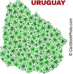 collage, mappa, foglie, marijuana, uruguay