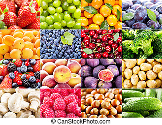 collage, met, gevarieerd, vruchten