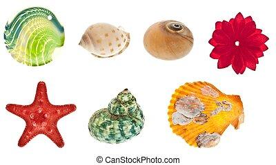 collage, objetos, mar