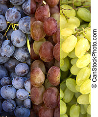 Collage of 3 kinds of grapes