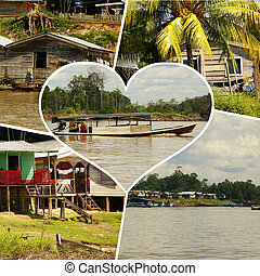Collage of amazonia,Peru (my photos)