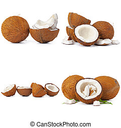 Collage of broken coconut pieces isolated on white background