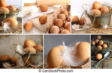 Collage of brown eggs images