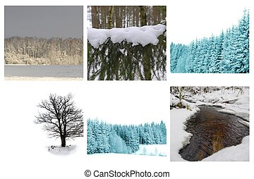 different winter pictures - collage of different winter ...
