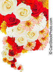 Collage of flowers on white