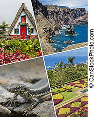 Collage of Madeira ( Portugal ) images - travel background