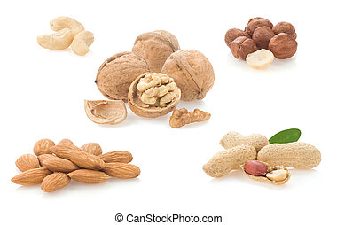 collage of nuts isolated on white