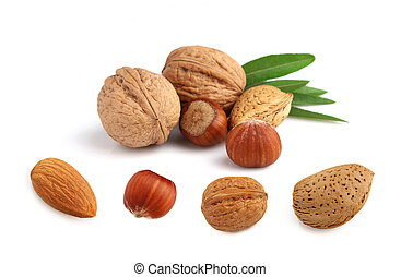 Collage of nuts jn a white background
