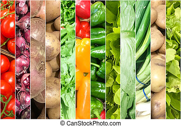 Collage Of Photos With Healthy Organic Vegetables. Collection Of Healthy Fresh Food Backgrounds.