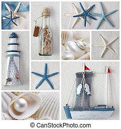 sea stars - Collage of summer sea stars