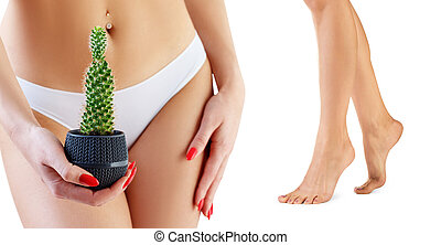 Collage of woman with cactus near panties and legs.